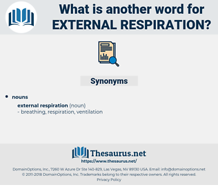 external respiration, synonym external respiration, another word for external respiration, words like external respiration, thesaurus external respiration
