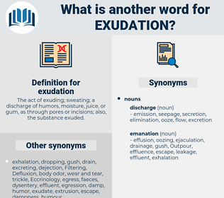 exudation, synonym exudation, another word for exudation, words like exudation, thesaurus exudation