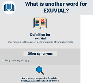 exuvial, synonym exuvial, another word for exuvial, words like exuvial, thesaurus exuvial