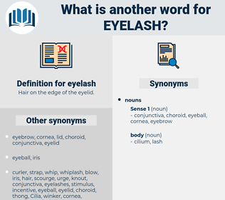 eyelash, synonym eyelash, another word for eyelash, words like eyelash, thesaurus eyelash