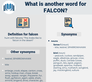 falcon, synonym falcon, another word for falcon, words like falcon, thesaurus falcon