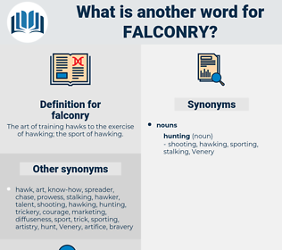 falconry, synonym falconry, another word for falconry, words like falconry, thesaurus falconry