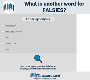 falsies, synonym falsies, another word for falsies, words like falsies, thesaurus falsies