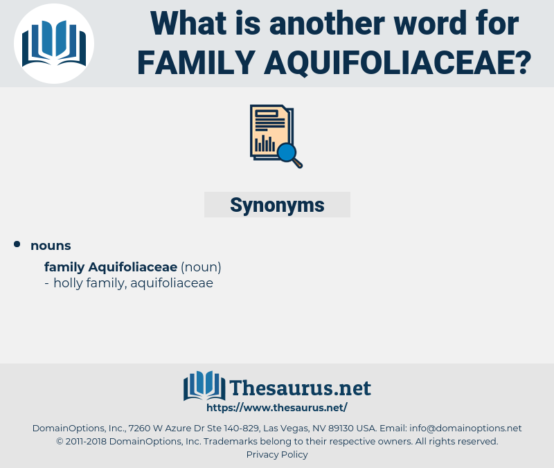 Family Aquifoliaceae, synonym Family Aquifoliaceae, another word for Family Aquifoliaceae, words like Family Aquifoliaceae, thesaurus Family Aquifoliaceae