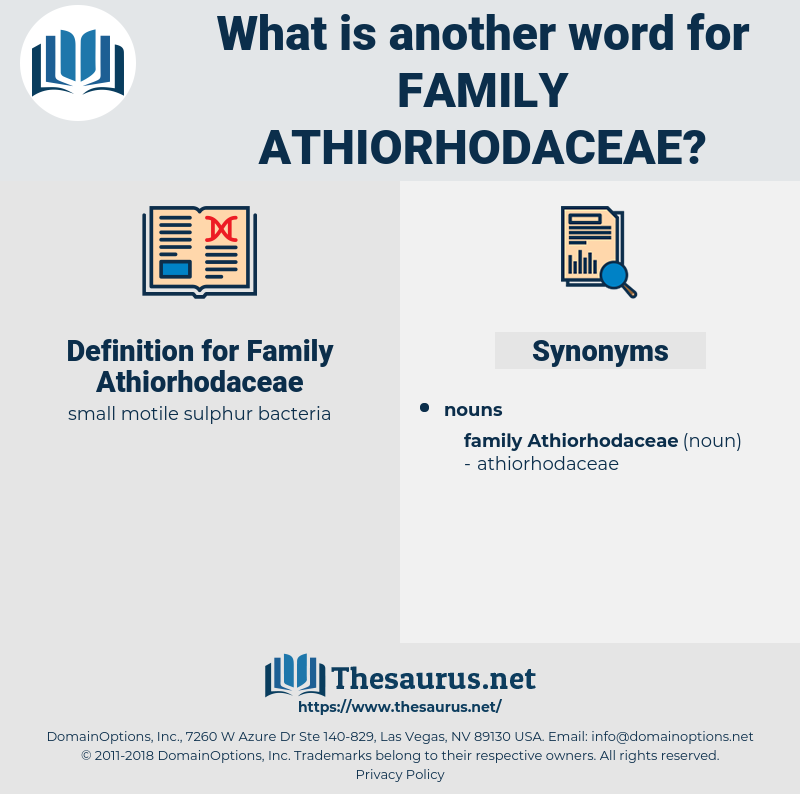 Family Athiorhodaceae, synonym Family Athiorhodaceae, another word for Family Athiorhodaceae, words like Family Athiorhodaceae, thesaurus Family Athiorhodaceae