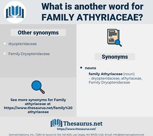 Family Athyriaceae, synonym Family Athyriaceae, another word for Family Athyriaceae, words like Family Athyriaceae, thesaurus Family Athyriaceae