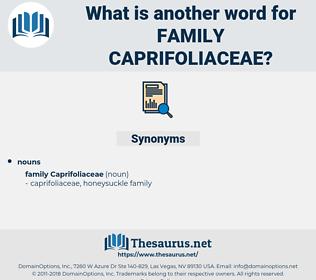 Family Caprifoliaceae, synonym Family Caprifoliaceae, another word for Family Caprifoliaceae, words like Family Caprifoliaceae, thesaurus Family Caprifoliaceae