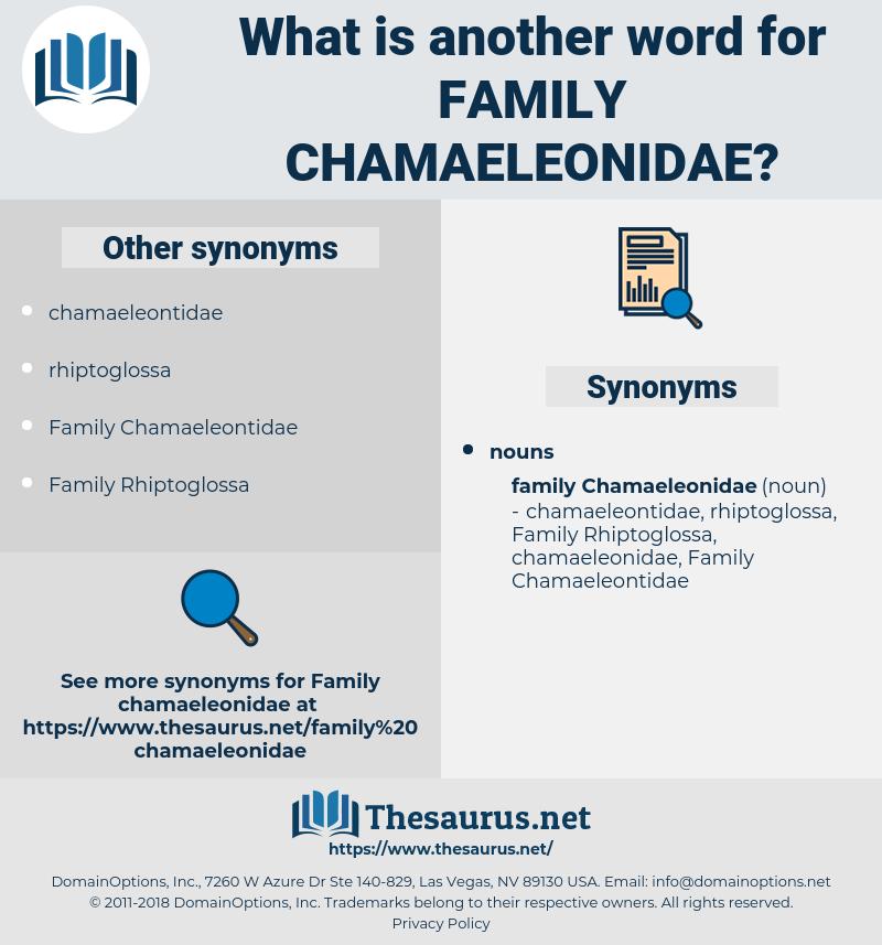 Family Chamaeleonidae, synonym Family Chamaeleonidae, another word for Family Chamaeleonidae, words like Family Chamaeleonidae, thesaurus Family Chamaeleonidae