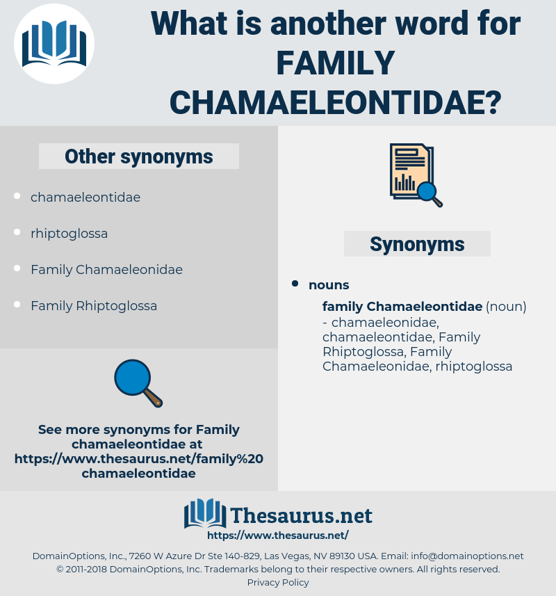 Family Chamaeleontidae, synonym Family Chamaeleontidae, another word for Family Chamaeleontidae, words like Family Chamaeleontidae, thesaurus Family Chamaeleontidae