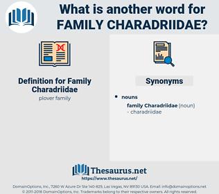 Family Charadriidae, synonym Family Charadriidae, another word for Family Charadriidae, words like Family Charadriidae, thesaurus Family Charadriidae