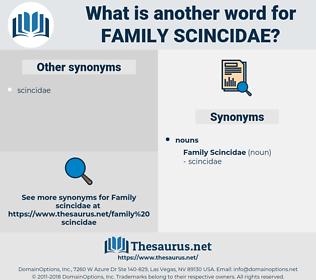 Family Scincidae, synonym Family Scincidae, another word for Family Scincidae, words like Family Scincidae, thesaurus Family Scincidae