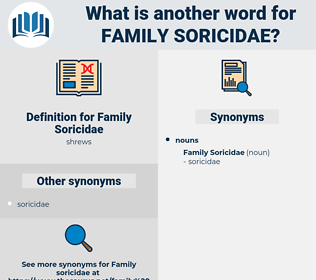 Family Soricidae, synonym Family Soricidae, another word for Family Soricidae, words like Family Soricidae, thesaurus Family Soricidae