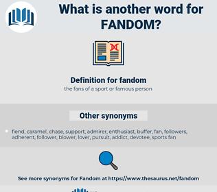 fandom, synonym fandom, another word for fandom, words like fandom, thesaurus fandom