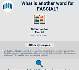 Fascial, synonym Fascial, another word for Fascial, words like Fascial, thesaurus Fascial