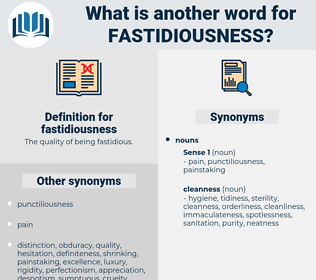 fastidiousness, synonym fastidiousness, another word for fastidiousness, words like fastidiousness, thesaurus fastidiousness