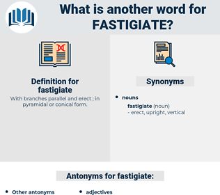 fastigiate, synonym fastigiate, another word for fastigiate, words like fastigiate, thesaurus fastigiate