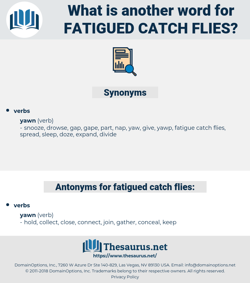 fatigued catch flies, synonym fatigued catch flies, another word for fatigued catch flies, words like fatigued catch flies, thesaurus fatigued catch flies