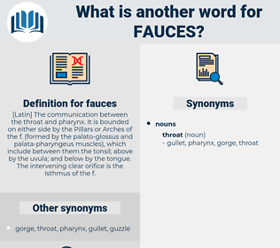 fauces, synonym fauces, another word for fauces, words like fauces, thesaurus fauces