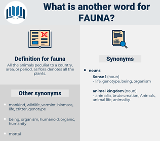 fauna, synonym fauna, another word for fauna, words like fauna, thesaurus fauna