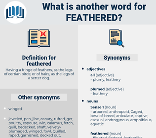 feathered, synonym feathered, another word for feathered, words like feathered, thesaurus feathered