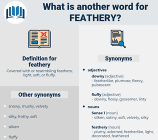 feathery, synonym feathery, another word for feathery, words like feathery, thesaurus feathery