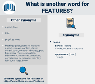 features, synonym features, another word for features, words like features, thesaurus features