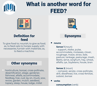 feed, synonym feed, another word for feed, words like feed, thesaurus feed