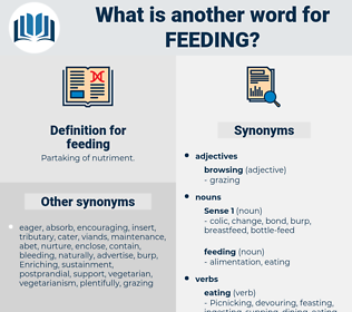 feeding, synonym feeding, another word for feeding, words like feeding, thesaurus feeding