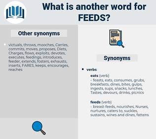 feeds, synonym feeds, another word for feeds, words like feeds, thesaurus feeds