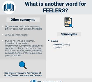 feelers, synonym feelers, another word for feelers, words like feelers, thesaurus feelers