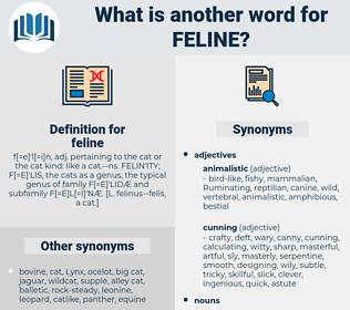 feline, synonym feline, another word for feline, words like feline, thesaurus feline