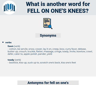 fell on one's knees, synonym fell on one's knees, another word for fell on one's knees, words like fell on one's knees, thesaurus fell on one's knees