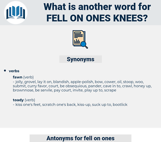 fell on ones knees, synonym fell on ones knees, another word for fell on ones knees, words like fell on ones knees, thesaurus fell on ones knees