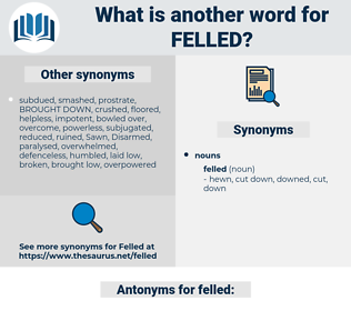 felled, synonym felled, another word for felled, words like felled, thesaurus felled