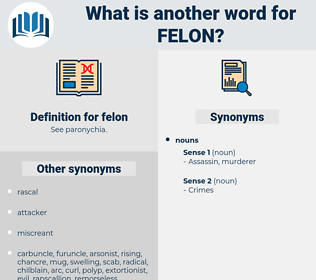 felon, synonym felon, another word for felon, words like felon, thesaurus felon