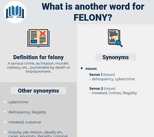 felony, synonym felony, another word for felony, words like felony, thesaurus felony