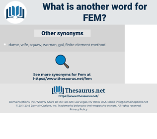 FEM, synonym FEM, another word for FEM, words like FEM, thesaurus FEM