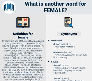 female, synonym female, another word for female, words like female, thesaurus female