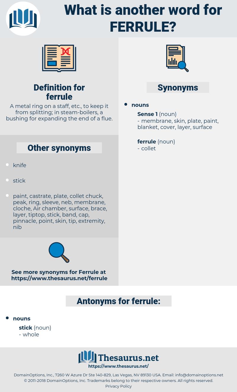 ferrule, synonym ferrule, another word for ferrule, words like ferrule, thesaurus ferrule
