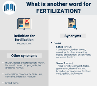 fertilization, synonym fertilization, another word for fertilization, words like fertilization, thesaurus fertilization