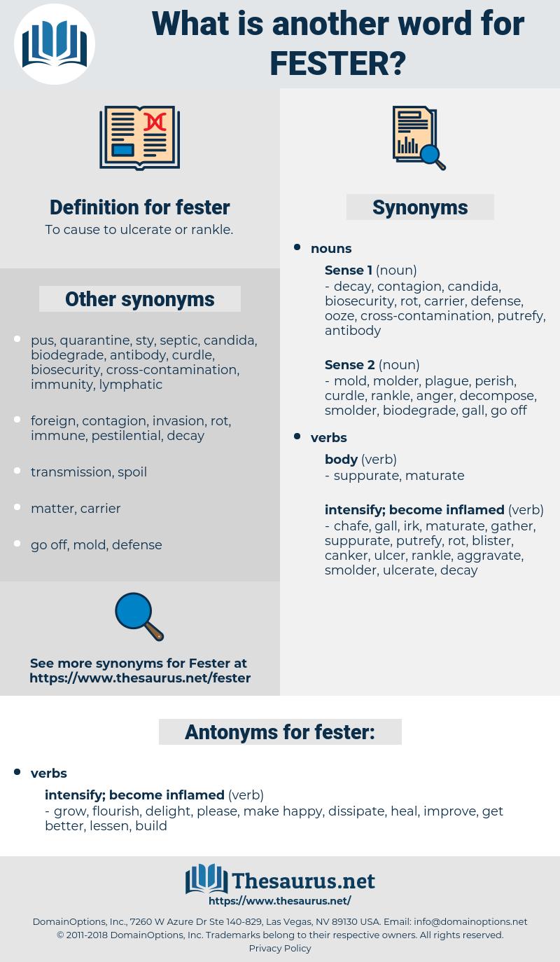 fester, synonym fester, another word for fester, words like fester, thesaurus fester