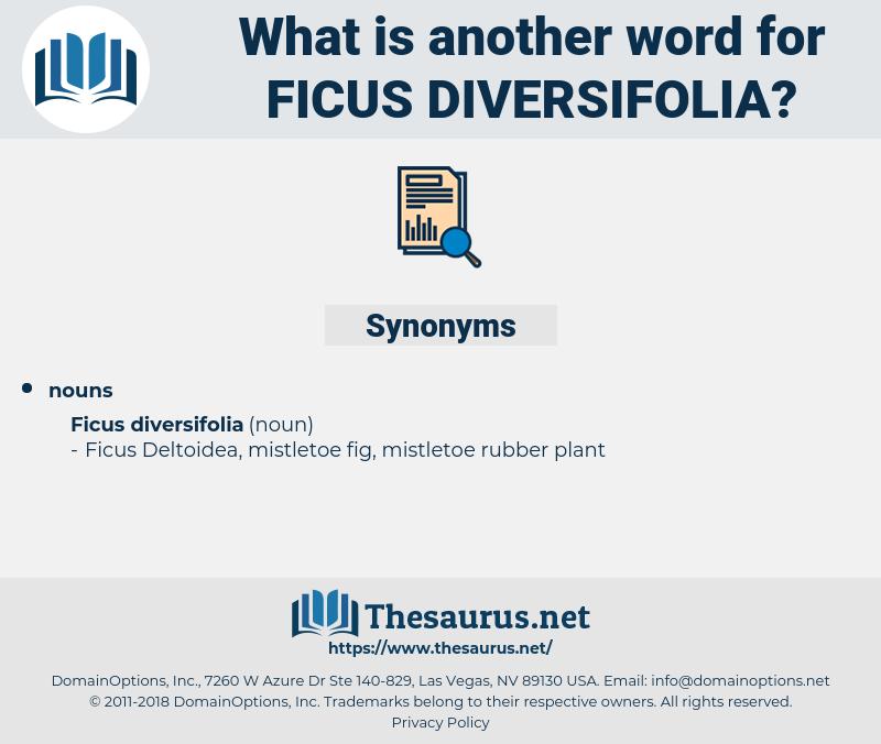 Ficus Diversifolia, synonym Ficus Diversifolia, another word for Ficus Diversifolia, words like Ficus Diversifolia, thesaurus Ficus Diversifolia
