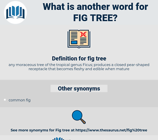 fig tree, synonym fig tree, another word for fig tree, words like fig tree, thesaurus fig tree