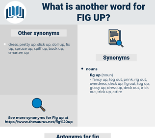 fig up, synonym fig up, another word for fig up, words like fig up, thesaurus fig up