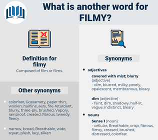 filmy, synonym filmy, another word for filmy, words like filmy, thesaurus filmy