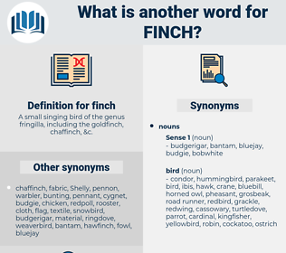 finch, synonym finch, another word for finch, words like finch, thesaurus finch