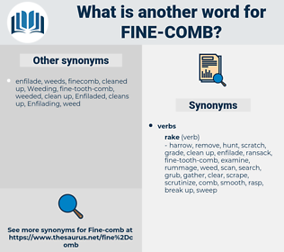 fine-comb, synonym fine-comb, another word for fine-comb, words like fine-comb, thesaurus fine-comb