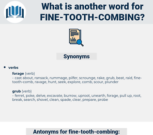 fine tooth combing, synonym fine tooth combing, another word for fine tooth combing, words like fine tooth combing, thesaurus fine tooth combing