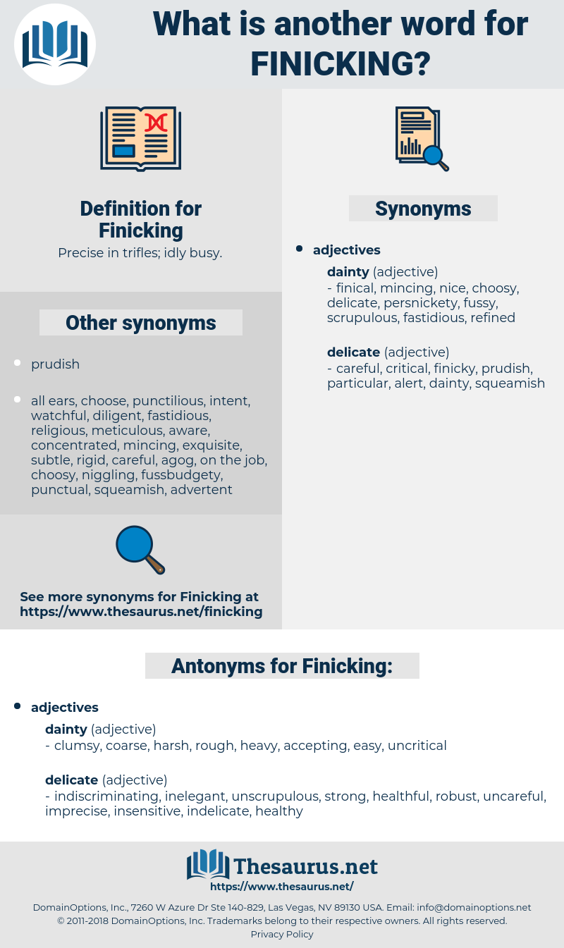 Finicking, synonym Finicking, another word for Finicking, words like Finicking, thesaurus Finicking