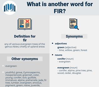 fir, synonym fir, another word for fir, words like fir, thesaurus fir